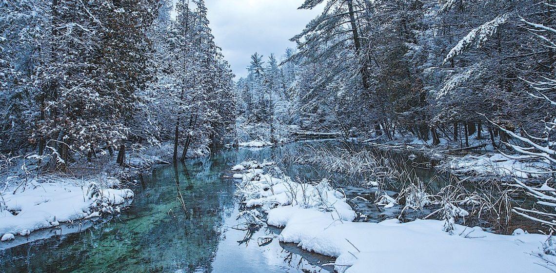 Ce facem iarna in Michigan pentru o vacanta minunata