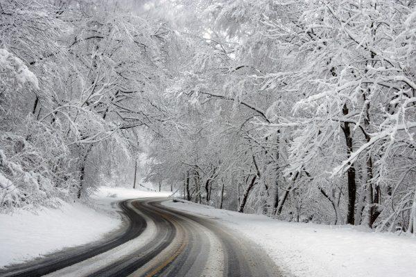 Ce putem sa facem iarna in Michigan