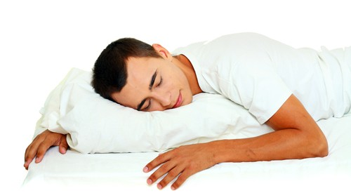 cat dormiti